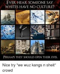 Sheit Meme - ever hear someone say whites have no culture perhaps they should