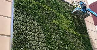 unique indoor planters plant outside wall planters delicate exterior wall decor u201a unique