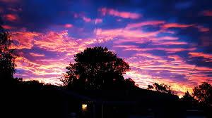 summer sunset readers u0027 photos western advocate