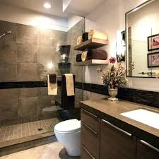 Pink And Brown Bathroom Ideas Blue Brown Bathroom Decor Justget Club
