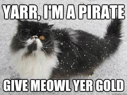 Cat Meme Boat - 14 of the best cat memes of all time