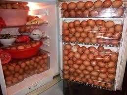 howtobasic u0027s fridge