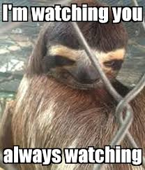 I M Watching You Meme - i m watching you always watching poster lol e keep calm o matic
