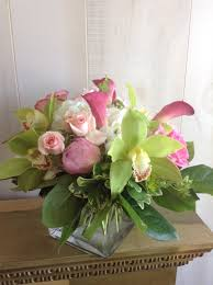 orchid delivery eastgreenwich florist flower delivery by busy bee florist