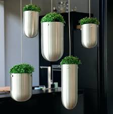 contemporary outdoor plants for pots modern outdoor plant pots