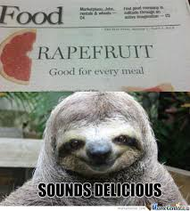 Sloth Rape Meme - rape sloth memes best collection of funny rape sloth pictures