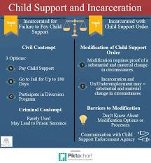 child support and incarceration infographic gif
