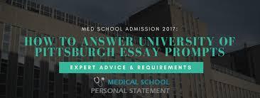 modestflat gq pitt university application essay