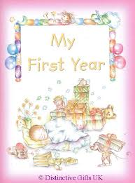 baby 1st year book my 1st year baby record book pink or blue