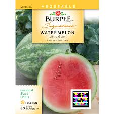 shop burpee watermelon vegetable seed packet at lowes com
