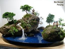 112 best bonsai u0026 penjing images on pinterest bonsai trees