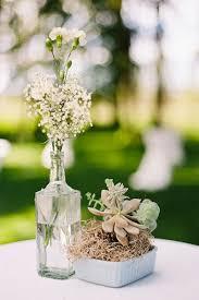 baby s breath flower wedding flowers baby s breath