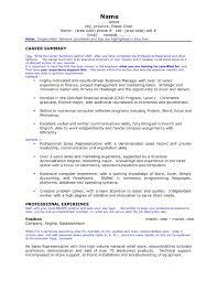 useful job resume career summary on career summary examples for