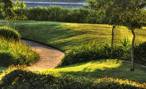 Best Home Decorating Blogs 2011 Landscaping Ideas For A Low Maintenance Yard Arafen