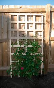 diy trellises for your garden for less than 20
