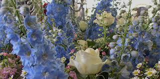 wedding flowers east sussex flowers by zara flora east grinstead florist