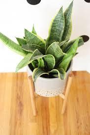 118 best diy planter pots plant stand terrarium images on