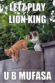 Mufasa Meme - daily afternoon randomness 51 photos lions kitten and animal
