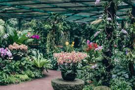 Singapore Botanic Gardens Location Singapore Botanic Gardens Spratt