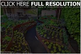 Vegetable Garden Layouts by Backyards Fascinating Backyard Vegetable Garden Design Small