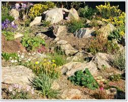 best rock garden design ideas on rocks gardenrock rockery and