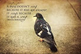 bird image quotes and sayings page 1