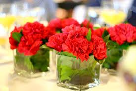 Wholesale Carnations Wholesale Wedding Flowers Blog Whole Blossoms Part 13