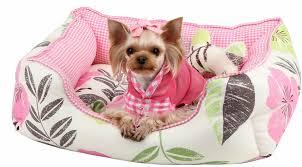 winsome extra small dog bed extra small dog beds uk large dog dog