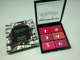 Makeup Artist Collection Makeup Artist Eyeshadow Palette Wjcon Mugeek Vidalondon