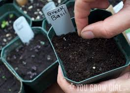 guide to choosing organic potting soil mixes u2013 you grow