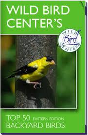Backyard Wild Birds Wild Bird Centers
