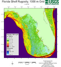 Map Of St Petersburg Florida by Cartographic Production For The Florida Shelf Habitat Flash Map
