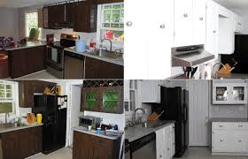 New Kitchen Cabinet Cost Kitchen Enchanting Cost To Paint Kitchen Cabinets Diy Kitchen