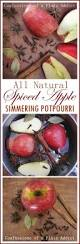 Fall Scents Slow Cooker Potpourri Fall And Winter Scents Recipe Easy
