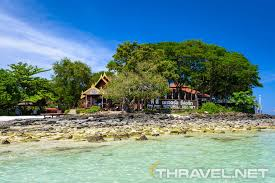 phi phi natural resort thailand u2013 a gateway for wild nature u0027s lovers