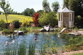 18 things you didn u0027t know you needed in your dream backyard