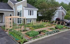 Front Yard Vegetable Garden Ideas Large Planter Boxes Diy Front Yard Vegetable Garden Front Yard