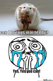 Rat Meme - yes cute little rat being by manthony meme center