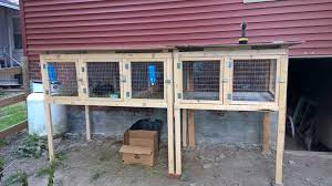 How To Build A Rabbit Hutch And Run 9 Completely Free Diy Rabbit Hutch Plans