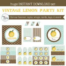 Vintage Birthday Decorations Vintage Lemon Birthday Party Lemon Baby Shower Lemon Birthday
