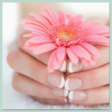 manicure u0026 pedicures clifton park ny
