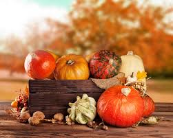 fall fruit and vegetables on wood thanksgiving stock image