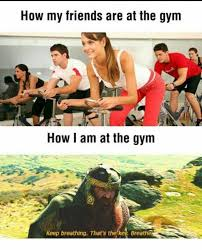 Girls At The Gym Meme - as a fat girl at the gym this could not be more accurate imgur