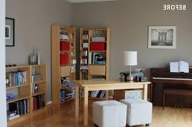 100 jungle themed home decor cheap cool room ideas
