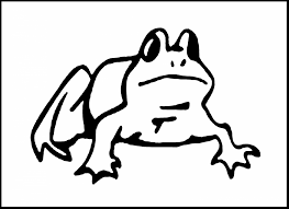 surprising frog coloring pages frog coloring