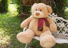 Bear On The Chair Big Bear Doll Stock Photo Image 53870792