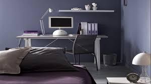 Choisir Peinture Chambre by Indogate Com Peinture Gris Bleu Pour Chambre
