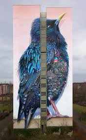 giant starling mural in berlin by collin van der sluijs and super berlin 9
