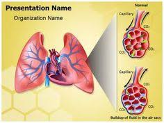 powerpoint design lungs cardiac blood vessels powerpoint presentation template is one of the