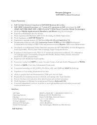 consulting resume sample sap sd support consultant resume resume for your job application sap abap resume sample resume cv cover letter